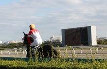 タノシンジョイ!-20121102船橋8R_7