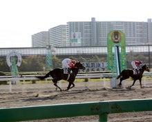 タノシンジョイ!-20121102船橋8R_24