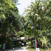 シンガポール・セントーサ島☆メガジップの画像