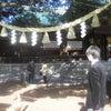 11/11(日)①明治神宮【参拝】②17時~【直会】の画像