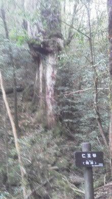 森大悟のブログ・大悟のハッピースマイル-20121106083733.jpg