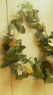 chouchouのHAPPY LIFE!-20121111113221.jpg