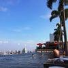 シンガポール☆マリナベイサンズプール2日目の画像