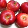 りんごジャムの画像