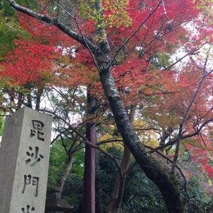 ~休日の散歩道 紅く色づく山科・毘沙門堂~の画像