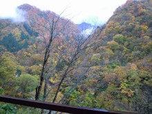京丹後市 炭火焼肉「もしもしかめ」の  よろず専務です-遠くに山