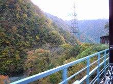 京丹後市 炭火焼肉「もしもしかめ」の  よろず専務です-青い柵