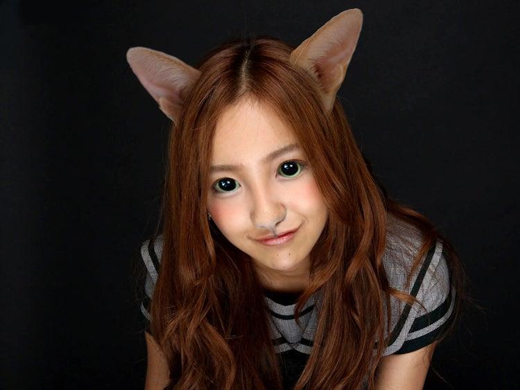 猫のアイドル1