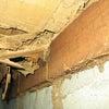白蟻の消毒の工事って必要なの?の画像