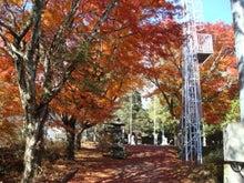 $みつとみななえの品川健康体操-紅葉神社