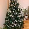 ようやくクリスマス!の画像