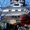 まこさんぽ@犬山城 ぱーと2の画像