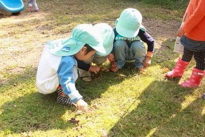 若草幼稚園-作品展34