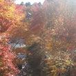 色づく景色