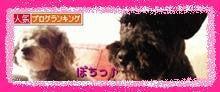 ゚.:。+゚*桜井 祐季のゆぅROOM*゚+。:.゚