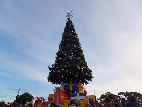Christmas in the park ご報告 | ニュージーランドってどんな国?~Sapporokiwis