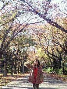 倉科カナ オフィシャルブログ Powered by Ameba-2012112513360000_ed.jpg