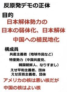$日本人の進路-反原発デモの正