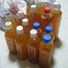 * 松永わい化りんご園さんで生ジュース作ってきましたの画像