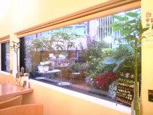 吹田市 千里丘 美容室 BOA SORTE(ボア ソルチ)のブログ-SH3B0472.jpg