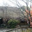 香川へドライブ