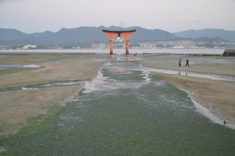 「僕」、日本(チャリ)と世界一周します。-DSC_1449.JPG