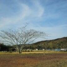 初冬の農村風景散策v…