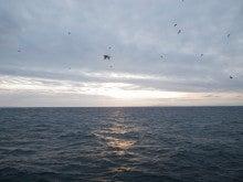 ☆極楽釣へと続く道☆-2012.12.03