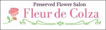 $プリザーブドフラワー Fleur de Colza