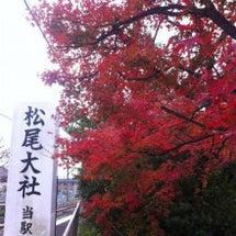 【京都】紅葉がキレイ…