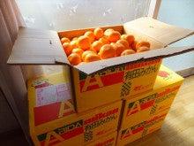 浄土宗災害復興福島事務所のブログ-20121204高久第1⑩