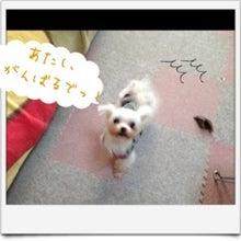 ぽんのブログ-image12.jpg