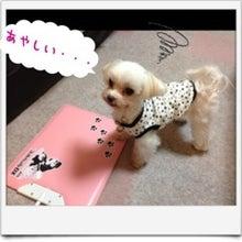 ぽんのブログ-image04.jpg