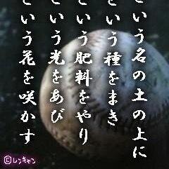photo06
