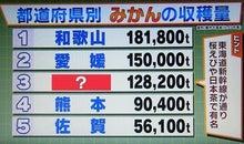 函館クイズ研究会-20121104002