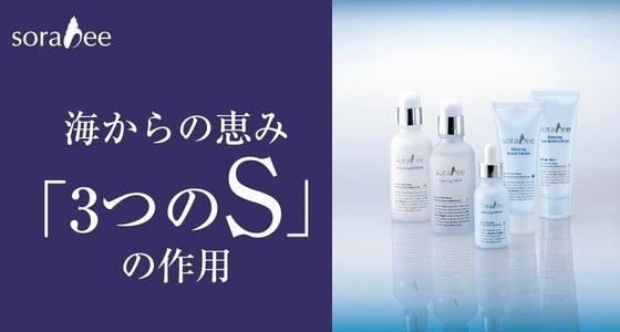 【商品説明】ソラビーバランシングシリーズ