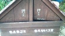 放浪猫 komakichi の ひのころ-amami201212-22