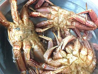 $北海道の魚介を直送の寿司店。堺筋本町駅徒歩1分 おたる栄六すし 大阪<br />-けがに ボイル