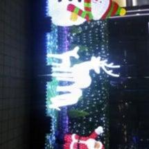 クリスマス(清葉)