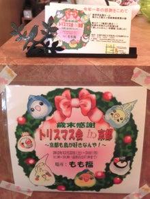 ようこそ!とりみカフェ!!~鳥カフェでの出来事や鳥写真~-もも福さんのトリスマス会のご案内♪