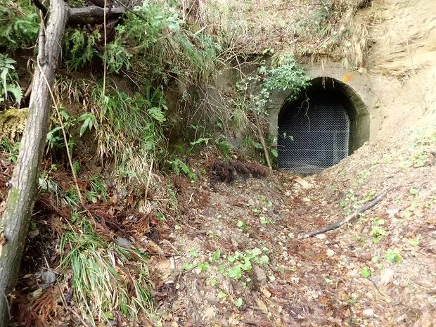 池原隧道に魅せられて・・・。