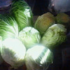 干すラー × 漬けラー =白菜漬け♪の画像