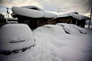 今年初の纏まった雪でしたの記事より