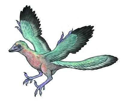 川崎悟司 オフィシャルブログ 古世界の住人 Powered by Ameba-始祖鳥