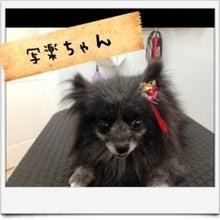 ぽんのブログ-image10.jpg