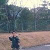 初凧上げの画像