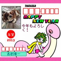 2013年新年(^O…