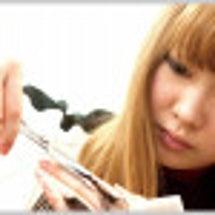美容師募集(見習い可…