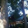 松蔭神社への画像