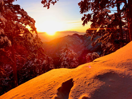 山のぼり日記